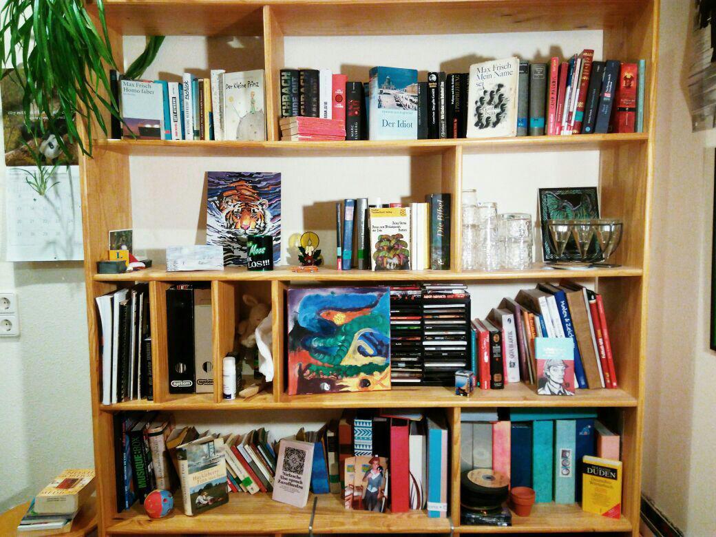 Einige von Jonas' Büchern stehen hier. © Jonas Galm